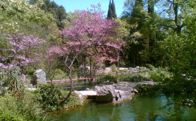 Райский уголок Фороса