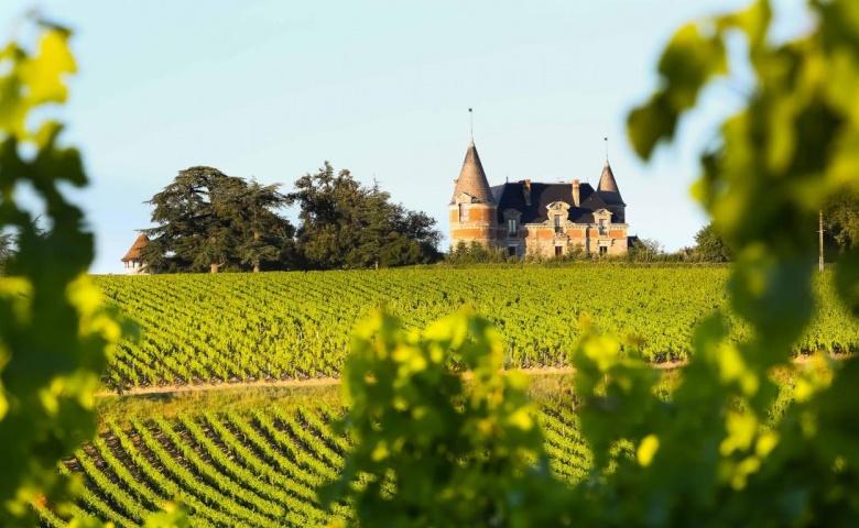 Автомобильная экскурсия из Бордо в винодельни и замки Сотерна