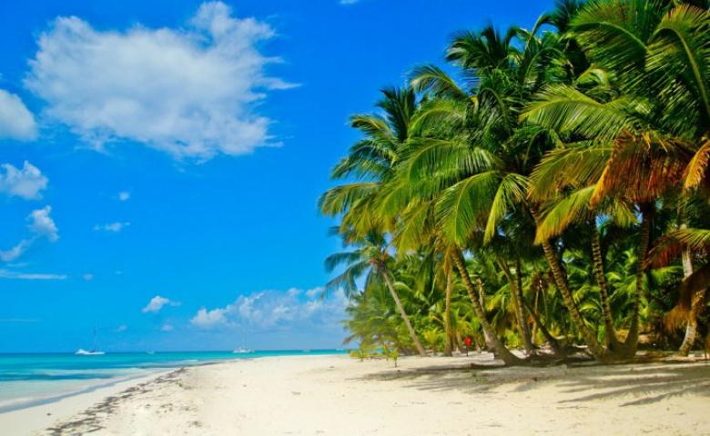 Знакомство с Доминиканой