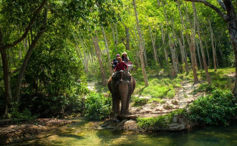 Сафари на слонах и водопад Хуай То