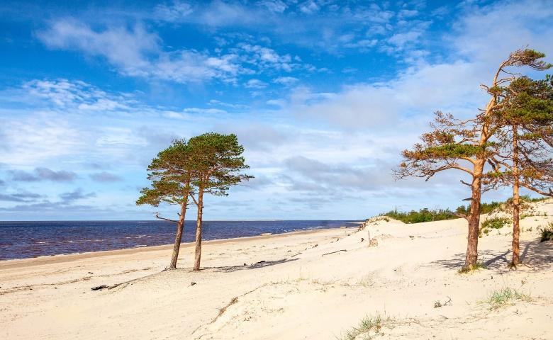Экскурсия к Белому морю — в город Северодвинск