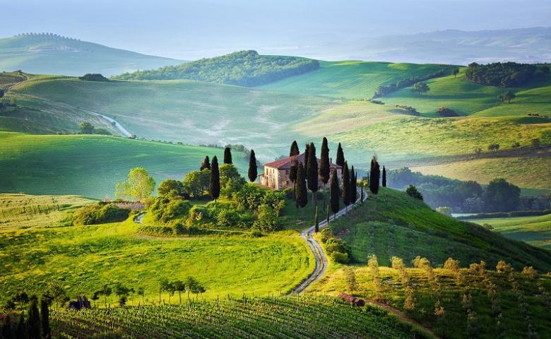 Винные и гастрономические экскурсии по замкам и винодельням долины Кьянти