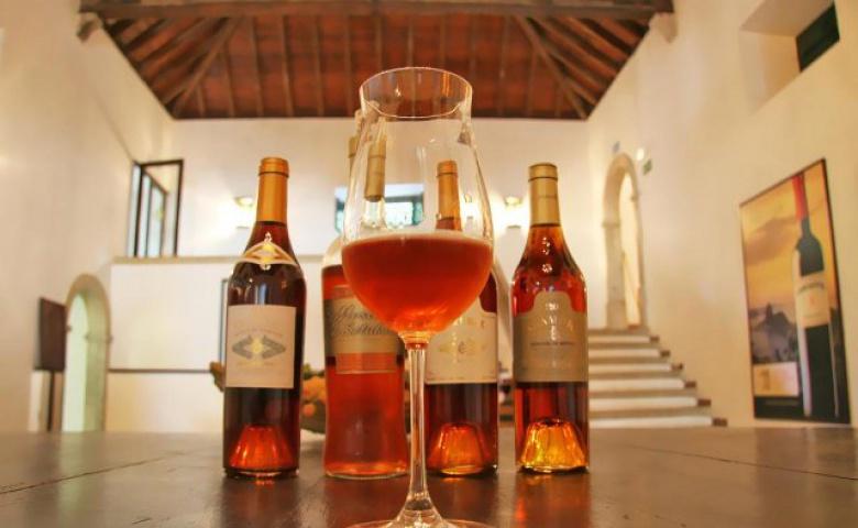 Экскурсия для интересующихся историей производства вин Португалии