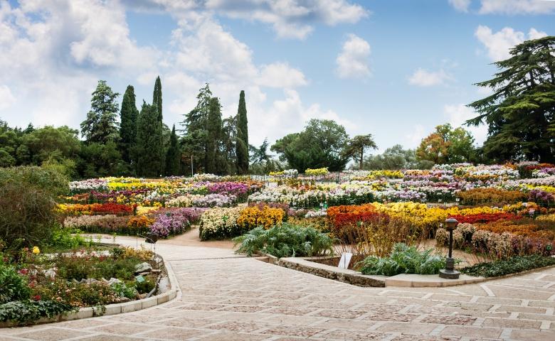 Путешествие в Никитский ботанический сад