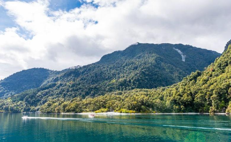 Экскурсия в национальный парк Висенте Перес Росалес «Озёра, вулкан Осорно и каскады Петроуэ»