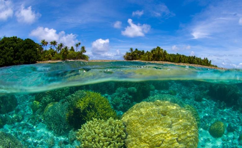 День на острове Рая