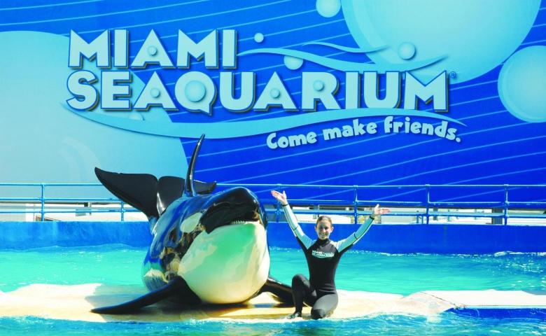 Экскурсия в океанариум Майами