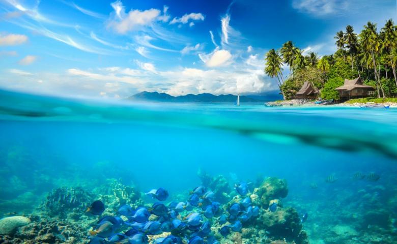 Экскурсия на остров Панай